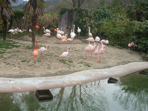 3-zoo (1).JPG