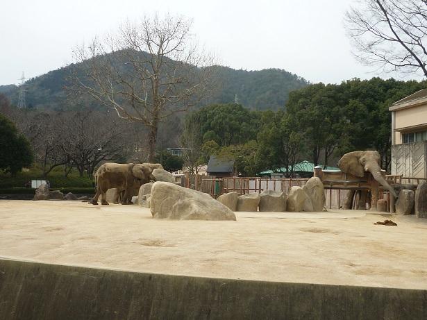6-zoo (1).JPG