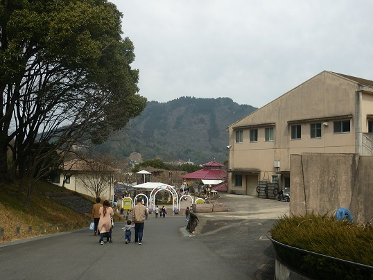 7-zoo (1).JPG