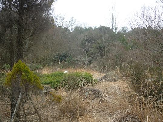 8-zoo (7).JPG