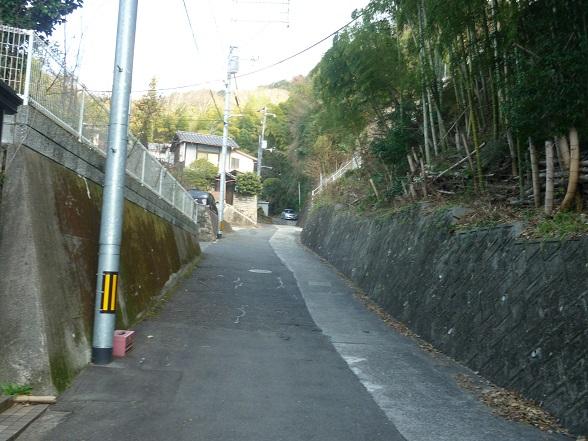 田舎を散歩 (12).JPG